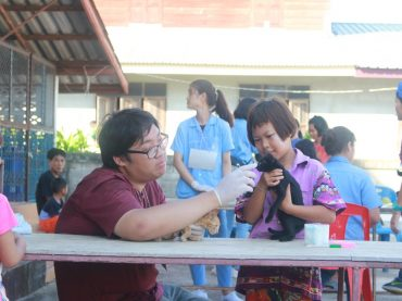 Faculty of Veterinary Medicine organizes the 15th Vet Camp